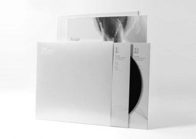 Songs For The Swans Left Behind – LP Packaging Design